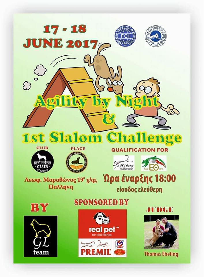 1st Slalom Challenge - Agility by Night 2017